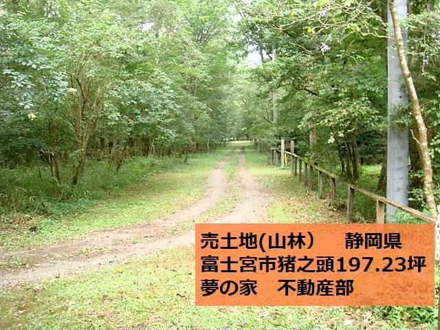 不動産 売土地 静岡県 富士宮市の山林約200坪